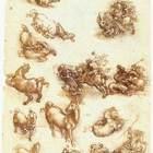 Leonardo da vinci  study sheet with horses